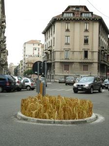 zan piazza ambrosoli a grano 2010