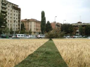 zan piazza po a grano 2010