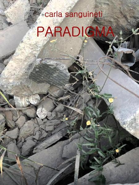 PARADIGMA 2.jpg
